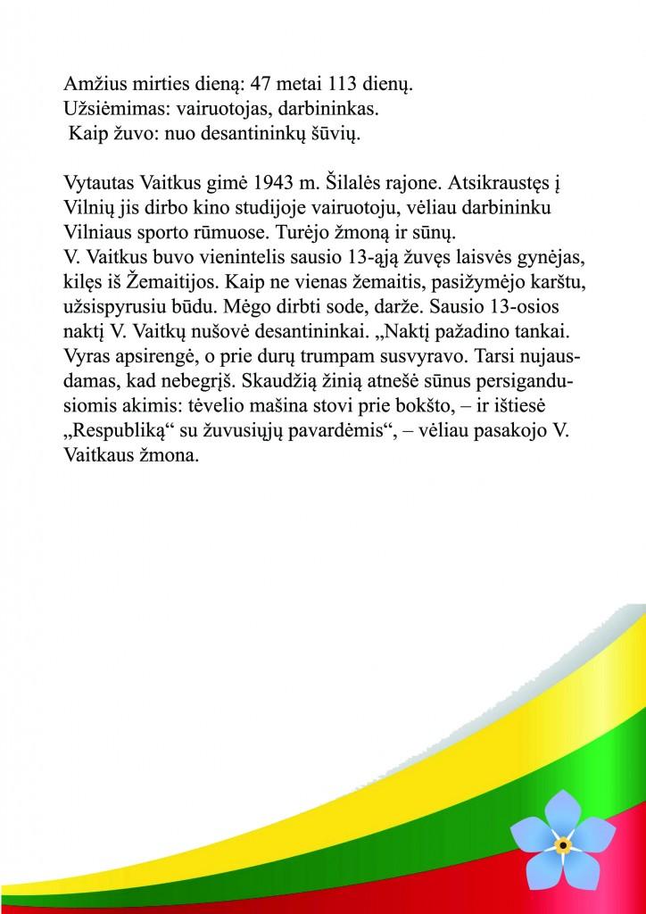 Vytautas Vaitkus